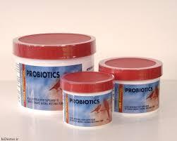پروبیوتیک قناری
